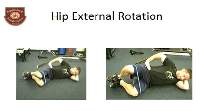 Hip External Rotation