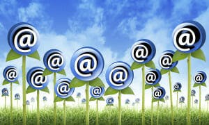 email lists and newsletter tips