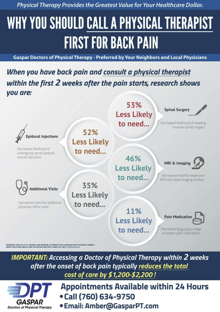physical therapy marketing infographic