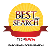 Best in Search Top SEOs