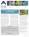 Altitude Physical Therapy Newsletter - June 2020