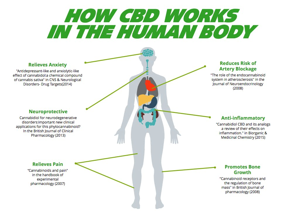 Cannabidiol Fast Track Physical Therapy