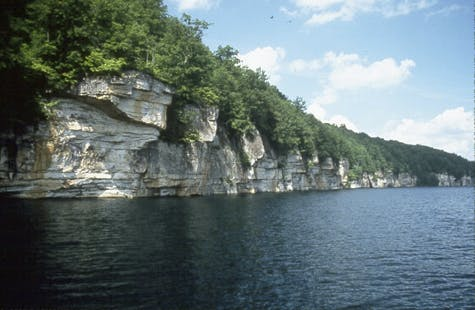 Mountaineer Physical Therapy | Summersville Lake Shoreline
