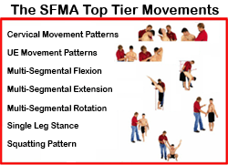 The SFMA Top Tier Movements