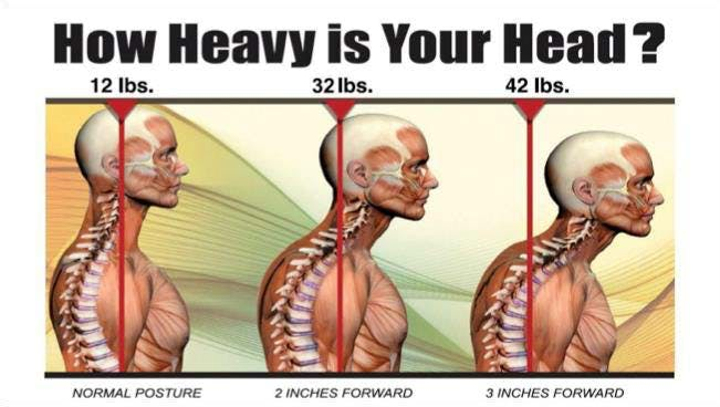 How heavy is your head?