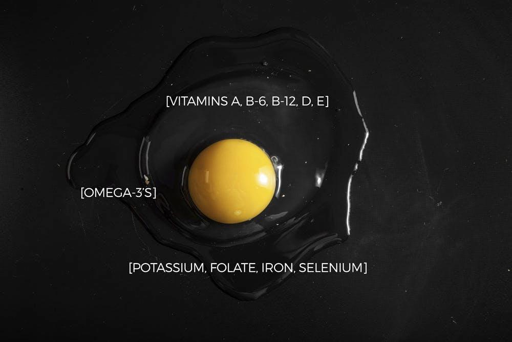egg yolk facts