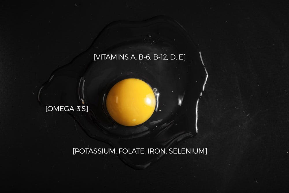 egg yolk facts