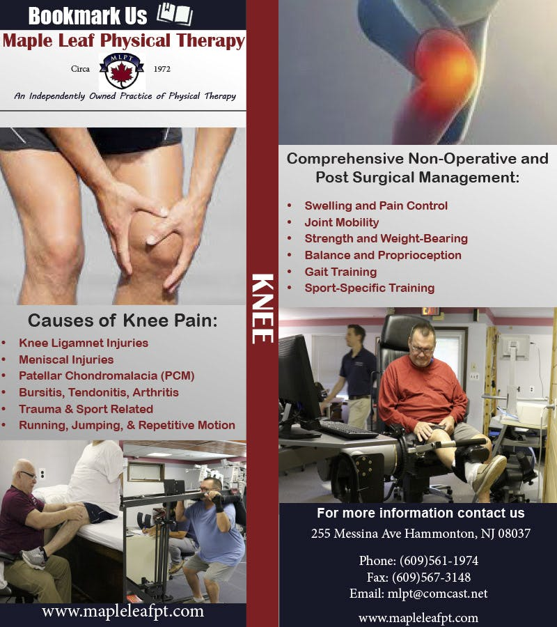 Maple Leaf Physical Therapy | Knee bookmark