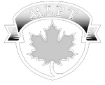 Maple Leaf Physical Therapy NJ