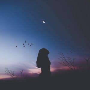 Girl moon birds at night