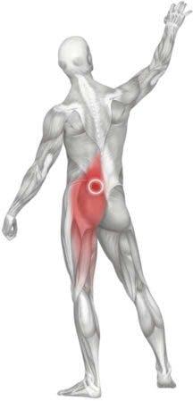 LBP hip weakness