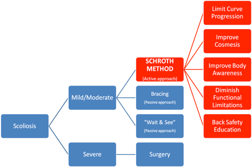 Schroth Method Chart
