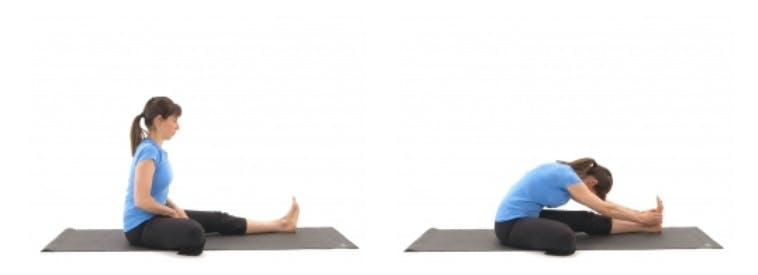 physiotherapy stretch for hamstrings