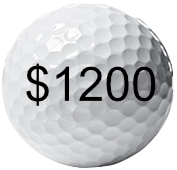 Complete Back to Golf Program