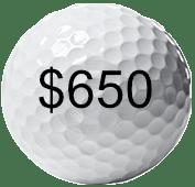 6-week Golf Specific Functional Training Program