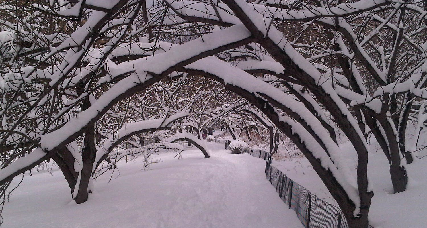 Australian Physio / Therapy Experts - Central Park - Winter