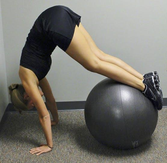 Physical Therapy   Lansing PA