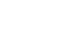 The American Physical Therapy Association (APTA)