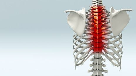 Upper Back Therapy Treatment Portland