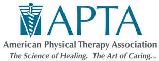 Physical Therapy Wheaton IL